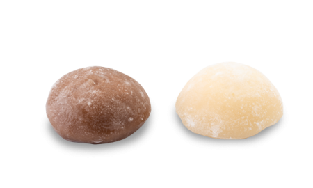 MOCHI VANILLE & CHOCOLAT